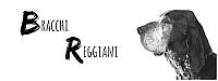Bracchi Reggiani
