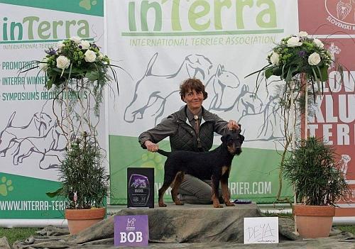 INTERRA SHOW MARIBOR 2017 DAMLA ADES DEL BOSCO MAGICO BOB