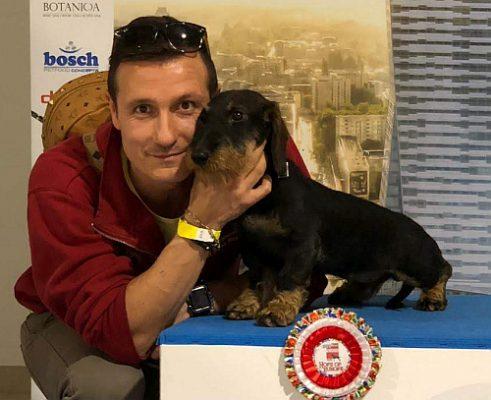 EUROPEAN DOG SHOW 2018 POLAND