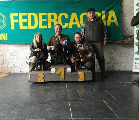 MINOTAURO DEL BOSCO MAGICO  3^ CLASSIFICATO Campionato italiano della Federcaccia 2019 per terrier e bassotti