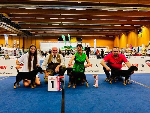 European Dog Show Wels 2019: successi per il Bosco Magico